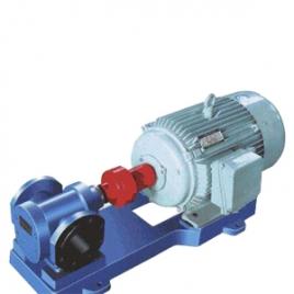 2CG型双齿轮油泵